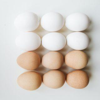 Де найбільше білків? ТОП-40 продуктів