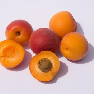Кісточки абрикоса: чим корисні та як правильно їсти